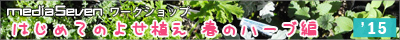 yoseue1504_bn